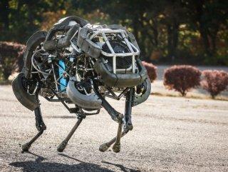 Google robotlarını bir bir satıyor