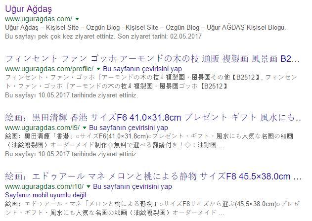 Wordpress çin virüsü