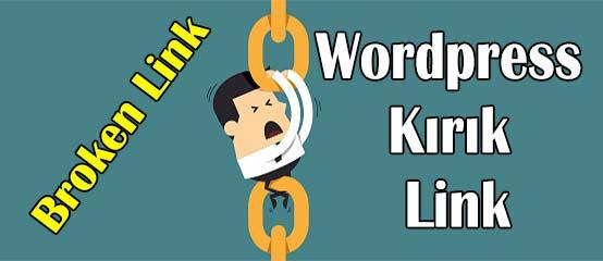 WordPress Kırık Linklerden Kurtulma Yöntemi