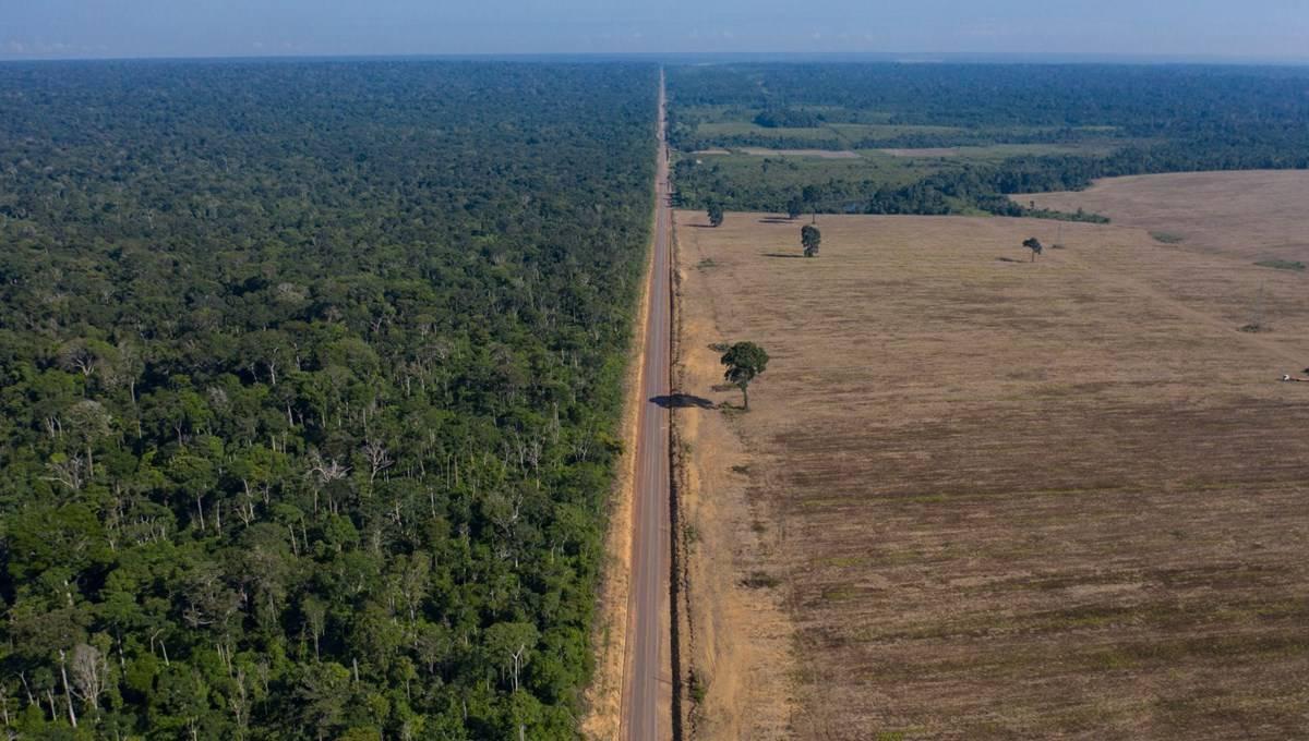 Facebook, Amazon Ormanları'nda arazi satışı ilanlarını yasakladı